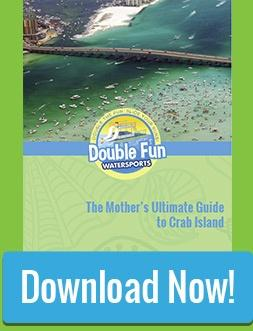 Download The Mother's Ultimate Guide to Crab Island!